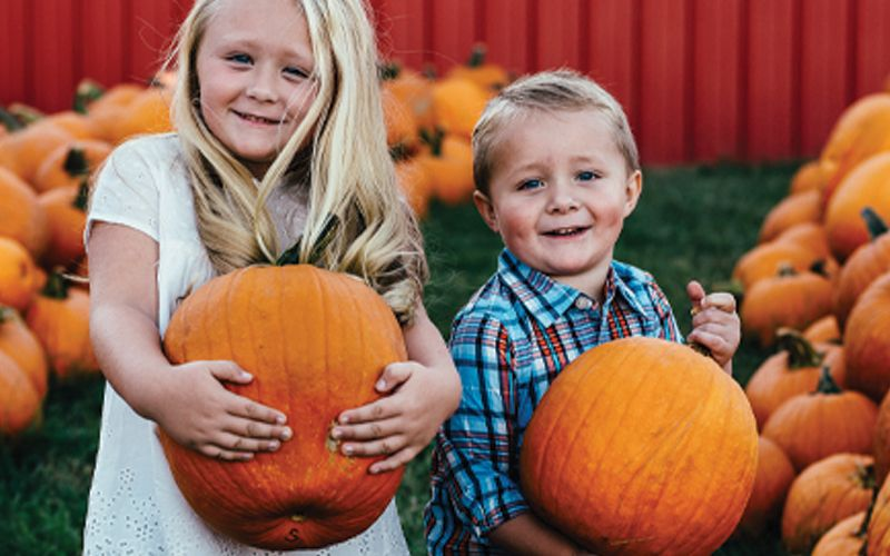 Nashville's Best Fall Family Tradition - Lucky Ladd Farms Pumpkin Patch Festival! | Murfreesboro, Franklin and Nashville, TN