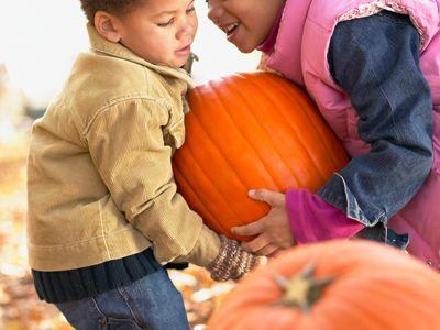 Pumpkin Patch | Nashville, Franklin, Murfreesboro TN